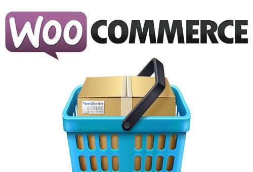 Instalar Idioma español a WooCommerce